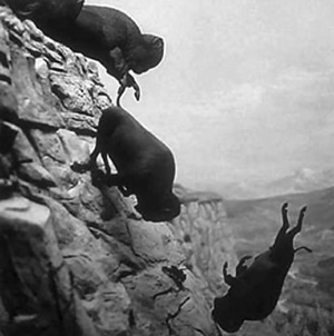 Buffalo Jumping Off the Cliff